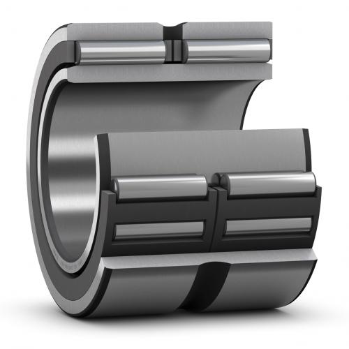 Iglicasti lezaji sa obradjenim prestenovima bez unutarnjeg prstena